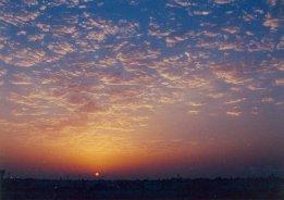 Sunsets at mine. My Dubai happy place.