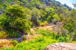 Los Liones Canyon photography by Dan Wilkinson (Hot & Delicious: Rocks The Planet). https://hotndelicious.com/