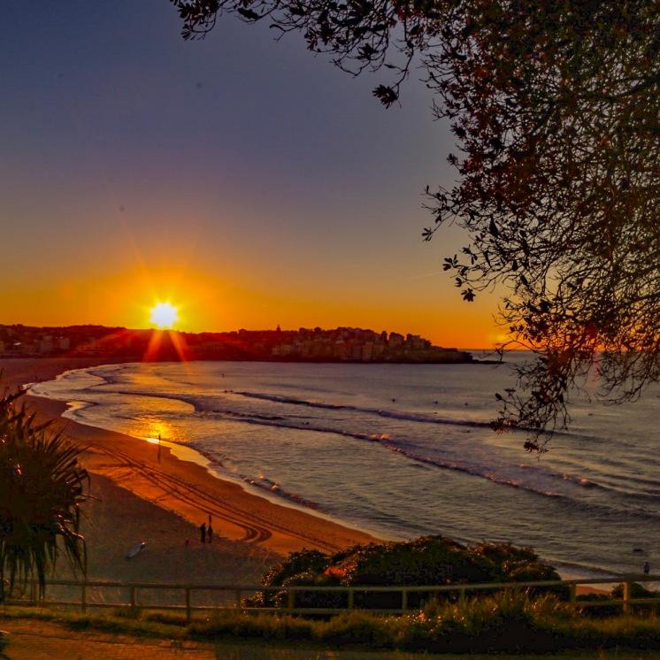 Bondi Beach sunrise capture by @hotndelicious