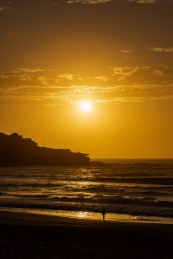 3479 @hotndelicious Photo Diary Oct 8 | Frothers + Wipeouts – Bondi Beach Sunrise Sessions by @hotndelicious