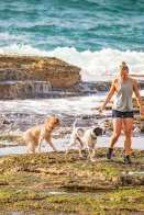 Mackenzies Bay Doggos | @BondiPupperazzi Photoshoot Oct 12